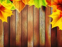 Autumn leaves over old wooden. plus EPS10 Royalty Free Stock Photography