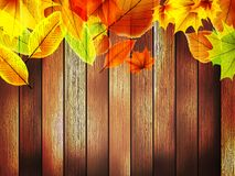 Autumn leaves over old wooden. plus EPS10 Stock Photography