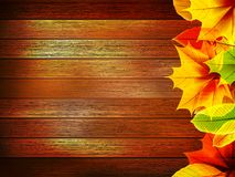 Autumn leaves over old wooden. plus EPS10 Stock Image