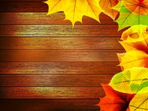 Autumn leaves over old wooden. plus EPS10 Royalty Free Stock Image