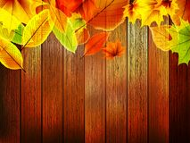 Autumn leaves over old wooden. plus EPS10 Stock Images