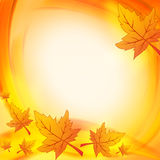 Autumn leaves over orange yellow background Royalty Free Stock Image