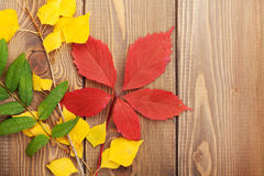 Autumn leaves over wood background Royalty Free Stock Images