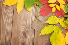 Autumn leaves over wood background with copy space Royalty Free Stock Photo