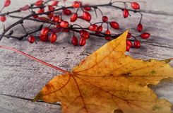 Autumn Leaves over wood Royalty Free Stock Photos