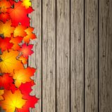 Autumn Leaves over wooden background. Royalty Free Stock Photo