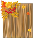 Autumn leaves over wooden background Stock Photo