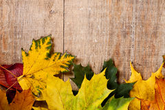 Autumn leaves over wooden background Royalty Free Stock Photography