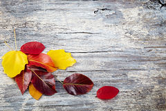 Autumn leaves over wooden background with copy space Royalty Free Stock Photo