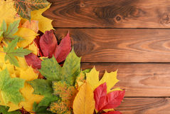 Autumn leaves over wooden background with copy space Royalty Free Stock Image