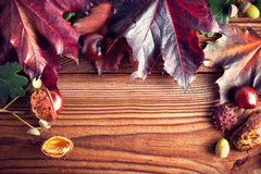 Autumn Leaves. Over wooden background.With copy space Stock Photo