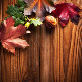 Autumn Leaves. Over wooden background.With copy space Royalty Free Stock Photos