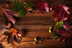 Autumn Leaves. Over wooden background.With copy space Stock Image