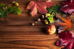 Autumn Leaves. Over wooden background.With copy space Royalty Free Stock Photography