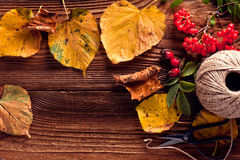 Autumn Leaves. Over wooden background.With copy space Stock Photos