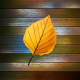Autumn Leaves over wooden background. EPS10 Stock Photo