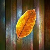 Autumn Leaves over wooden background. EPS10 Royalty Free Stock Images