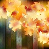 Autumn Leaves over wooden background. EPS10 Royalty Free Stock Photo