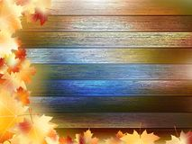 Autumn Leaves over wooden background. EPS10 Royalty Free Stock Photography