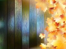 Autumn Leaves over wooden background. EPS10 Stock Photos