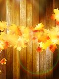 Autumn Leaves over wooden background. EPS10 Royalty Free Stock Photos