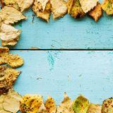 Autumn Leaves over wooden background Stock Photos
