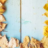 Autumn Leaves over wooden background Stock Photography