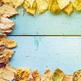 Autumn Leaves over wooden background Royalty Free Stock Photos