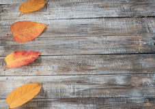 Autumn leaves over wooden background. Royalty Free Stock Image