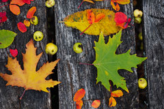 Autumn leaves over wooden background Royalty Free Stock Image
