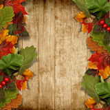 Autumn Leaves Over Wooden Background With Copy Space Royalty Free Stock Images