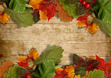 Autumn Leaves Over Wooden Background With Copy Space Stock Photo