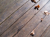 Autumn leaves over wooden boards floor Royalty Free Stock Photos