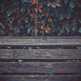 Autumn Leaves Over Wooden Planks humide photo stock