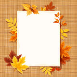 Autumn leaves and a paper sheet on a sacking fabric. Vector eps-10. Stock Photos