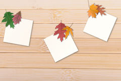 Autumn leaves with paper Royalty Free Stock Images