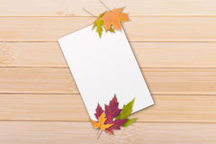 Autumn leaves with paper Stock Images