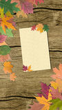 Autumn leaves with paper Royalty Free Stock Photography