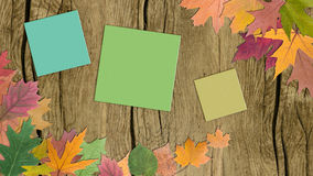Autumn leaves with paper Stock Photography