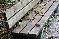 Autumn leaves on park bench Stock Images
