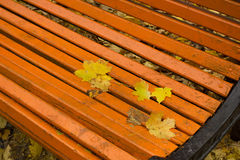 Autumn leaves. On a park bench. Season Royalty Free Stock Image