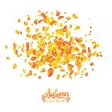 Autumn leaves particles isolited in white background Royalty Free Stock Images
