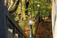 Autumn Leaves on a Path. Autumn leaves carpet a city walking path Royalty Free Stock Photography