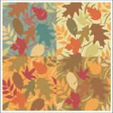 Autumn Leaves Pattern. A seamless, repeating Autumn leaves pattern in four colorways Royalty Free Stock Image