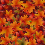 Autumn leaves pattern background. Realistic Vector illustrations Stock Photography