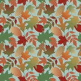 Autumn Leaves Pattern with Blue Background Royalty Free Stock Photos