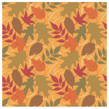 Autumn Leaves Pattern C Royalty Free Stock Photos