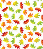 Autumn leaves pattern Royalty Free Stock Photography