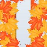 Autumn Leaves Pattern rojo y amarillo Fotografía de archivo libre de regalías