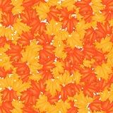Autumn Leaves Pattern rojo y amarillo Imágenes de archivo libres de regalías
